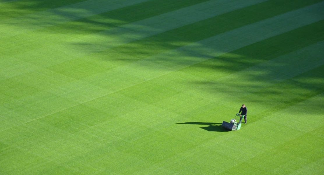 How to Start a Lawn Care Business?