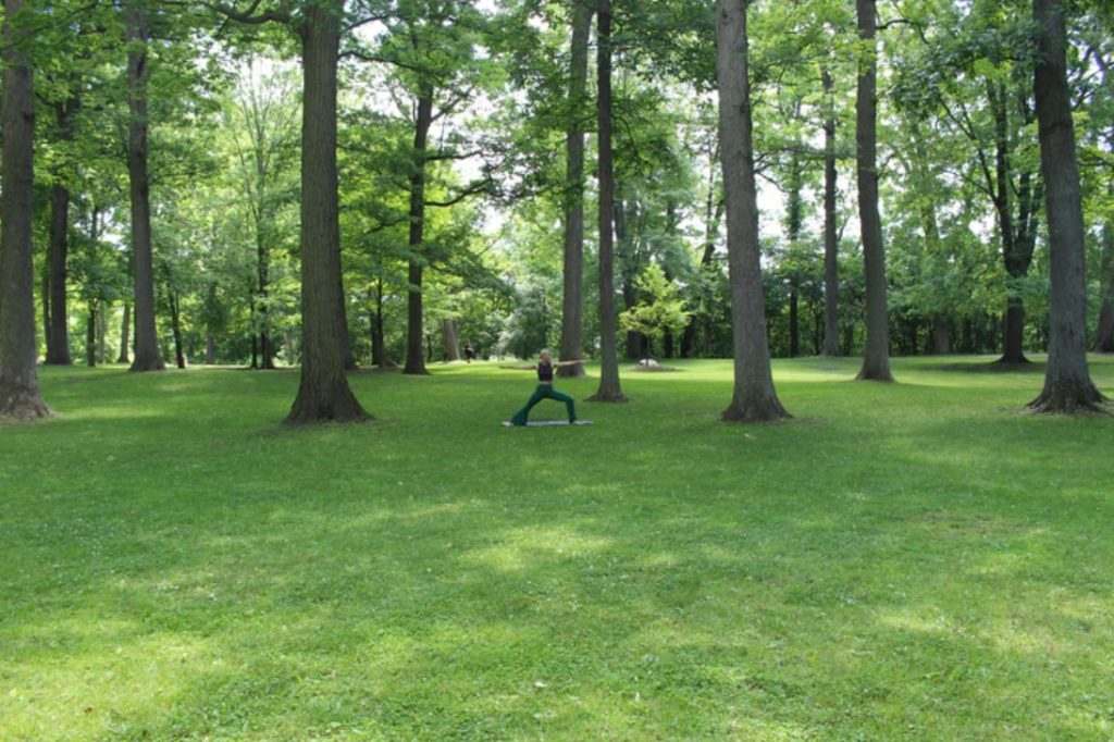 lawn care business in usa